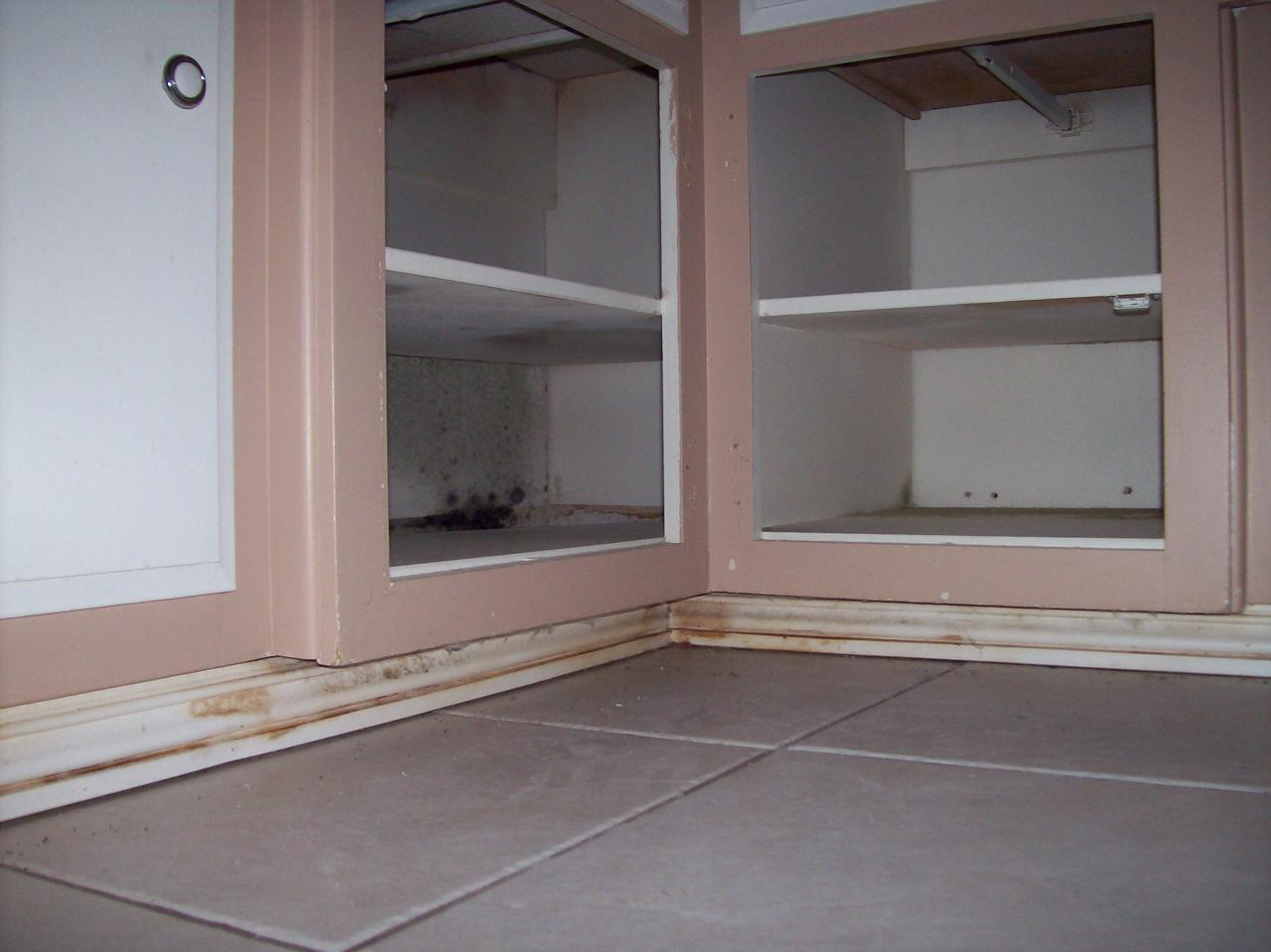 Fidelity Warranty Services >> First Choice Painting & Drywall - Mold Services - Refrences